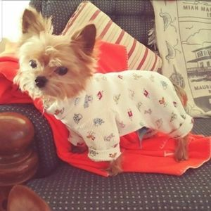 Other - Dog Pj's handmade